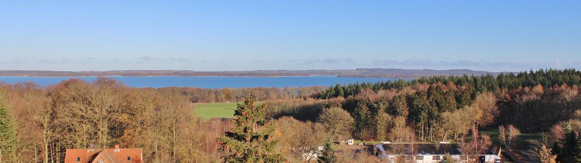 Ausblick zum Selenter See